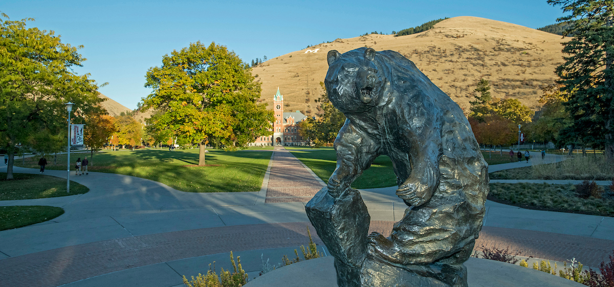 The grizzly bear statue on the campus of the University of Montana